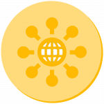 network yellow